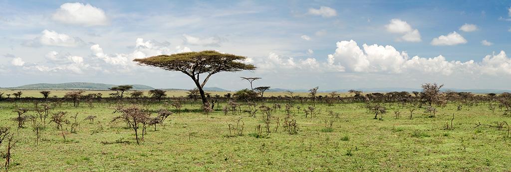 Trek dans les gorges d'Olduvai