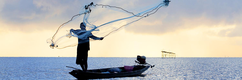Pour une partie de pêche !
