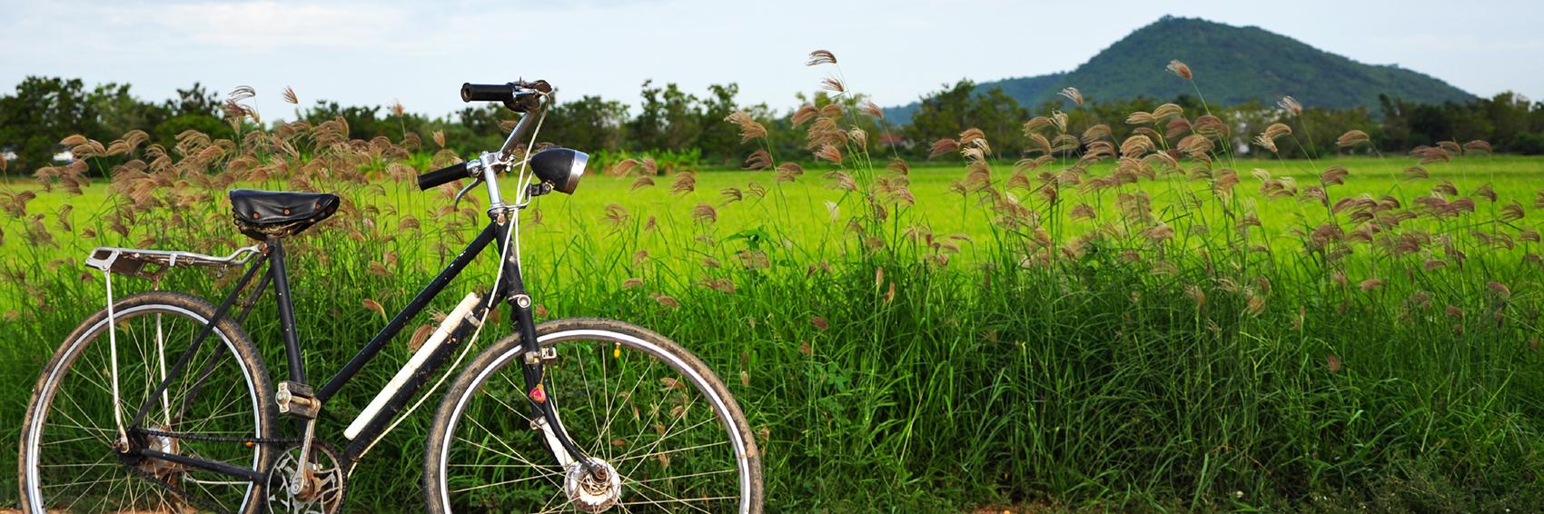 Vélo le long de la rivière des parfums