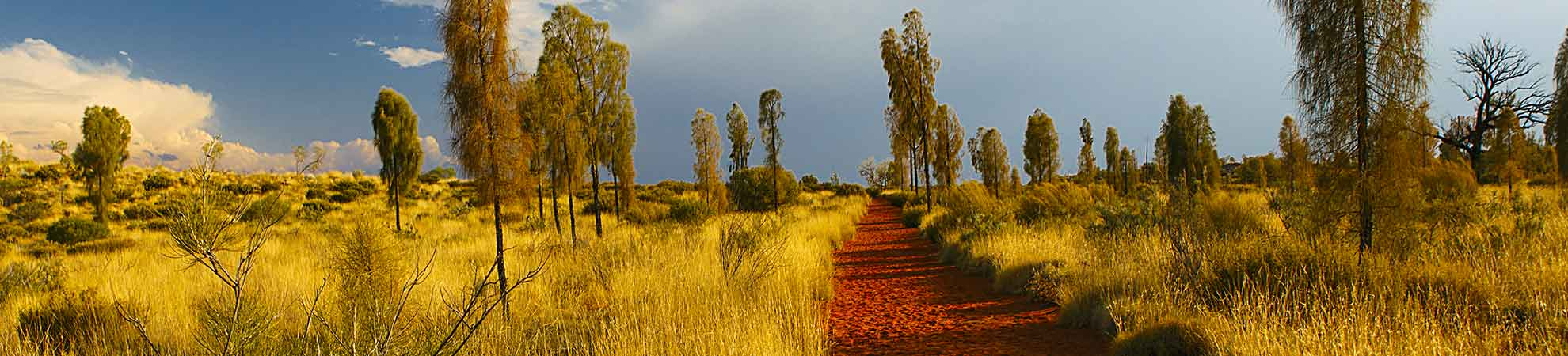 Visiter le Parc National d'Uluru