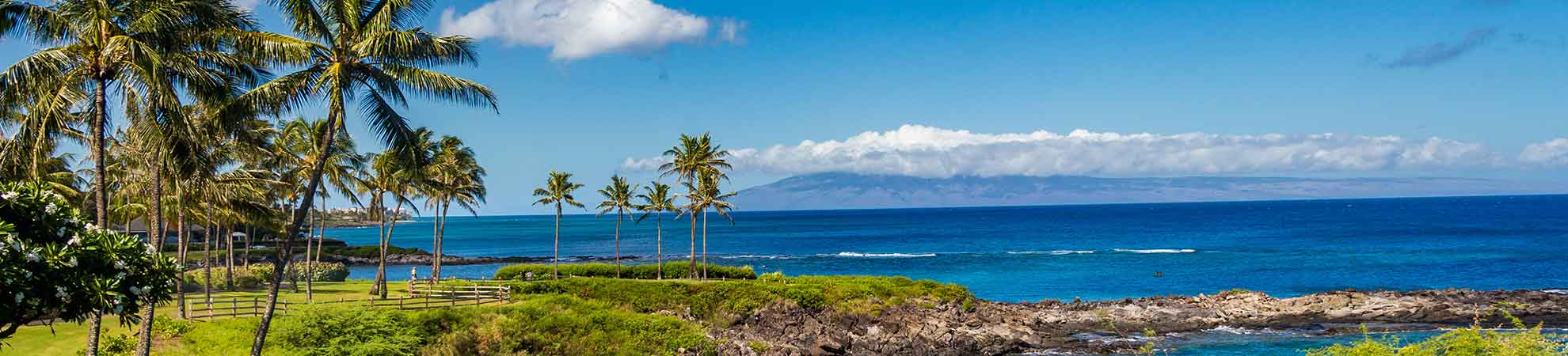 Billet avion Hawaii : comment trouver des vols à destination d'Hawaii et choisir son vol ?