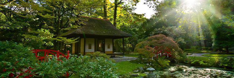 Visite guidée des villes de Takamatsu, Itano, Iya, Kotohira et Matsuyama.