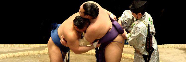 Assistez à un entraînement de sumos et rencontrez les champions !