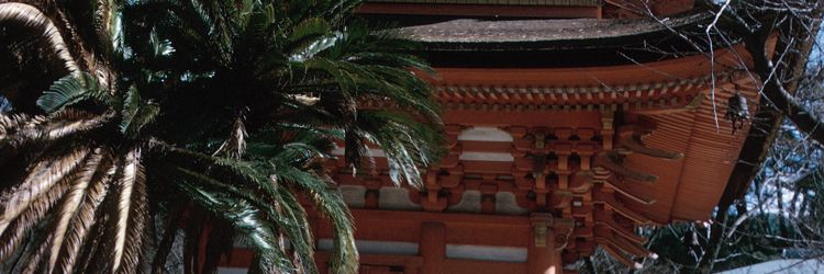 Visit the towns of Takamatsu, Itano, Iya, Kotohira and Matsuyama
