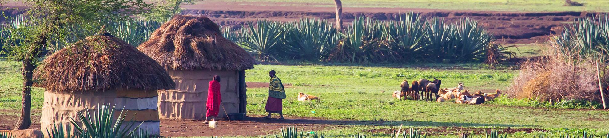 Niveau de vie en Tanzanie