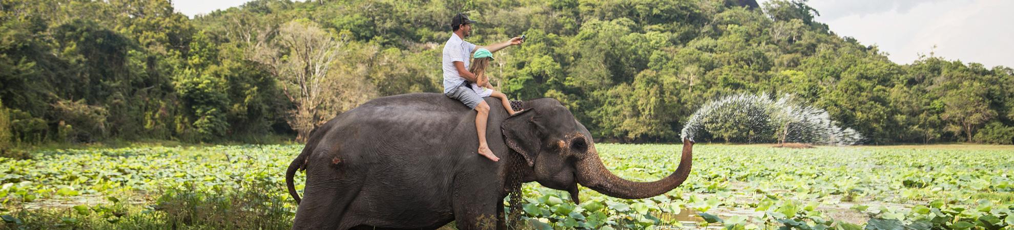Paysages du Sri Lanka