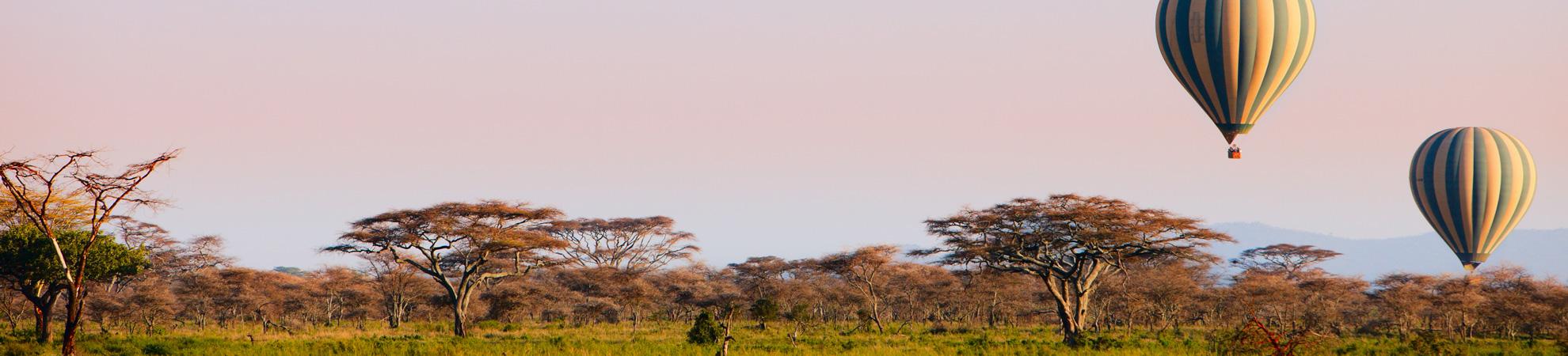 Que faire au Kenya