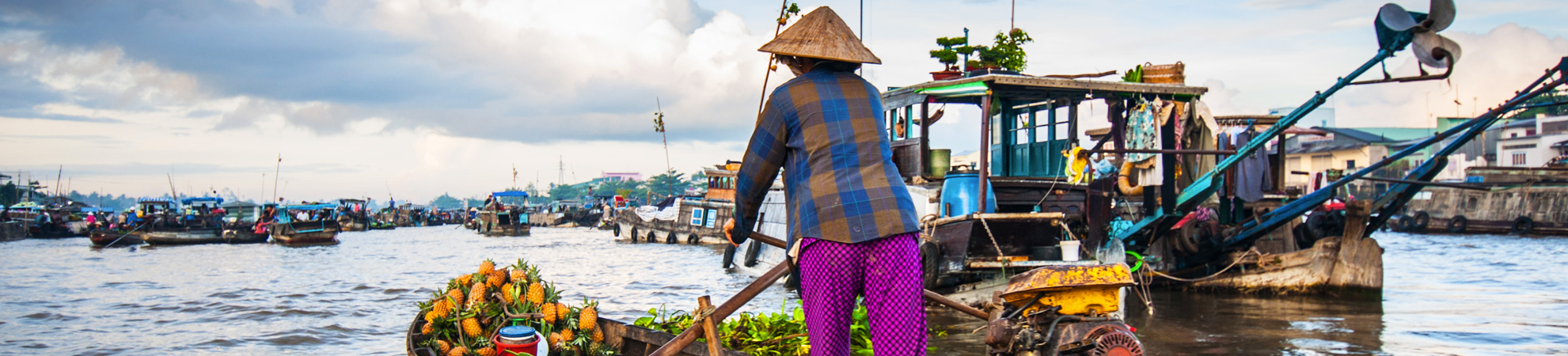 Quel guide de voyage choisir pour son circuit au Vietnam ?