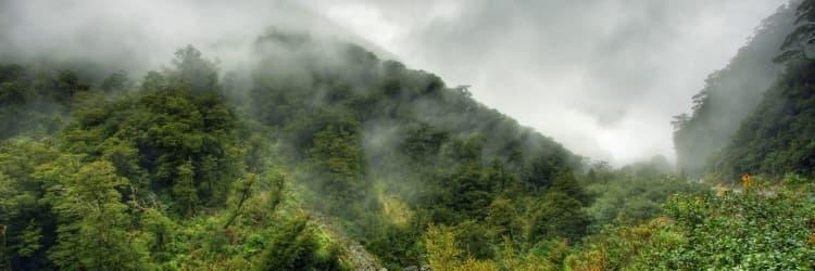 Maliau: The Lost World of Sabah