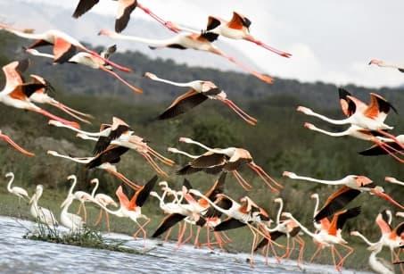 Mozambique, le paradis retrouvé