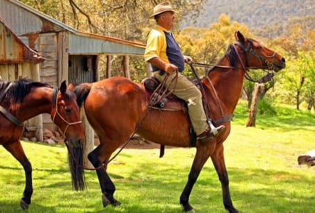 Extension : Un ranch au cœur du Kimberley