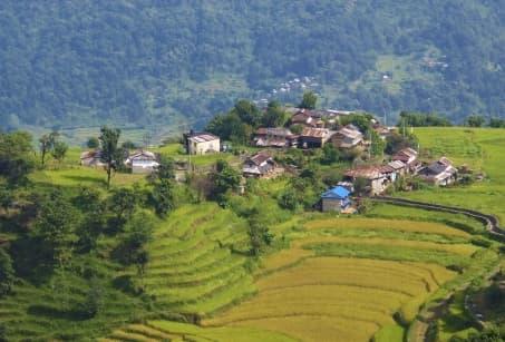 Népal : Villages Tamang du parc du Lantang