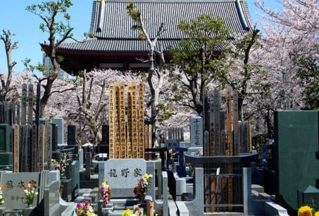 Sur les chemins de pèlerinage de Shikoku