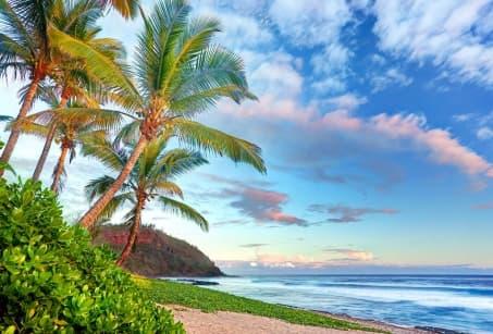 Aventures créoles, de la Réunion à Maurice
