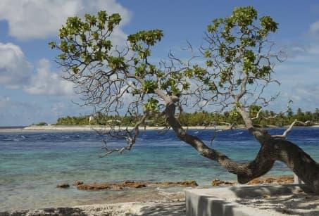 Le paradis perdu des Tuamotu