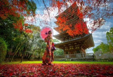 Japon : l'Odyssée poétique