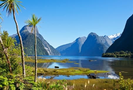 Nouvelle Zélande, ivresse des grands espaces
