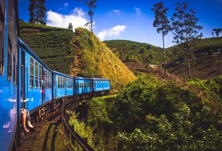 Echappée verte au Sri Lanka