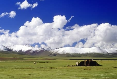 Extension - Mongolie en version confort