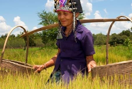 Paysages et Ethnies du Laos
