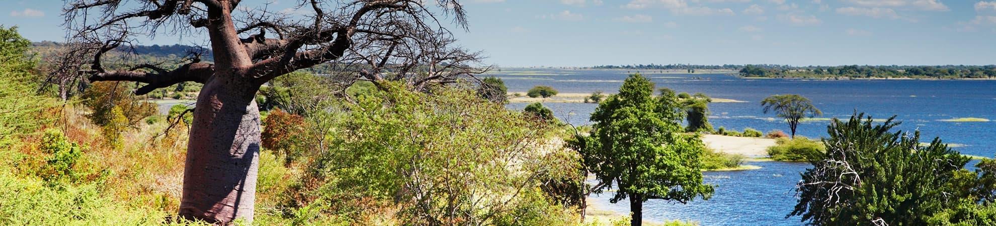 Voyage Le Botswana