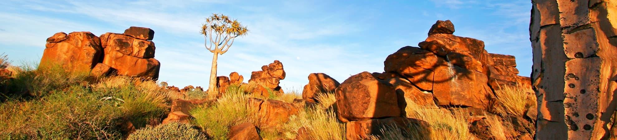 Voyage Les Plateaux du nord - Afrique du Sud