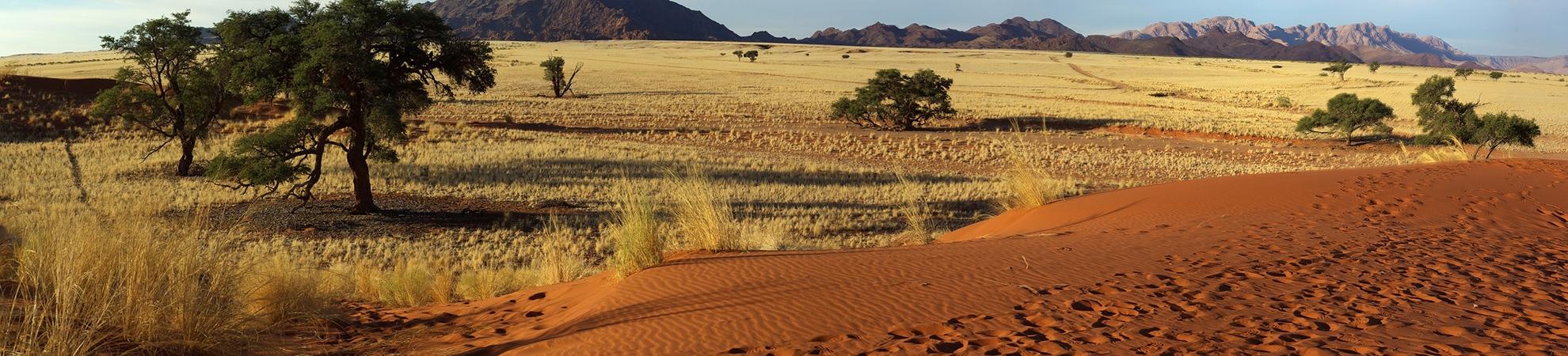 Fiche Pays Namibie