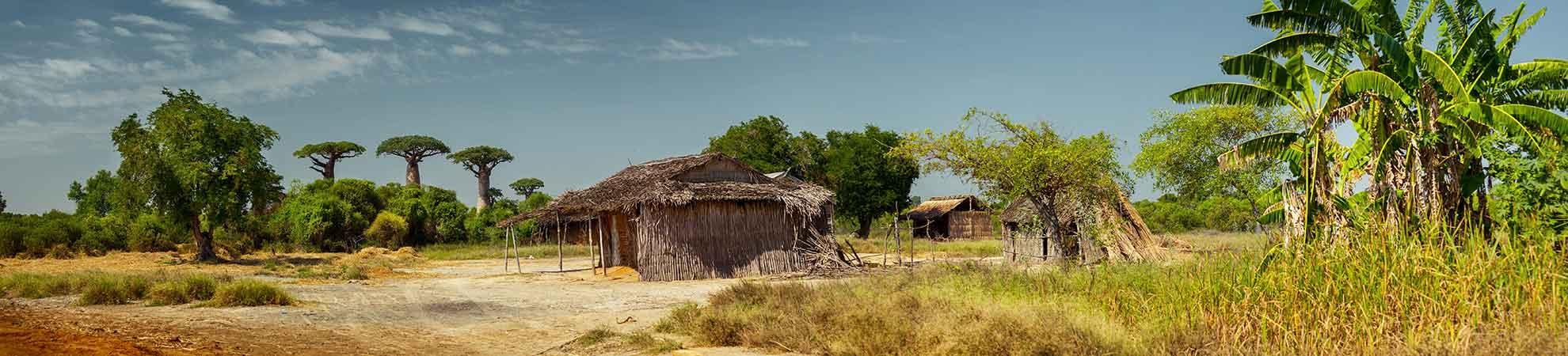 Fiche pays Madagascar