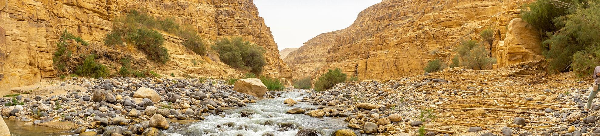 Voyage Réserve d'Al Mujib