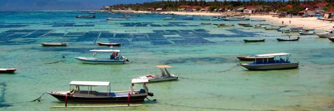 Fiche pays Bali