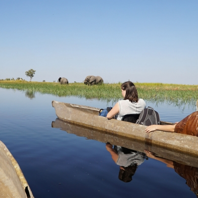 Safari Okavango