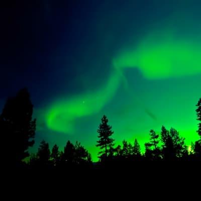 Chasse aux aurores boréales