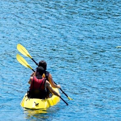 Balade en kayak à Monterey