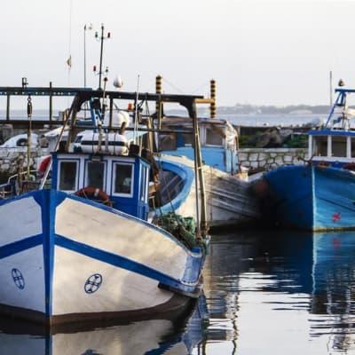 Pêche au gros sur l'ile de Sal