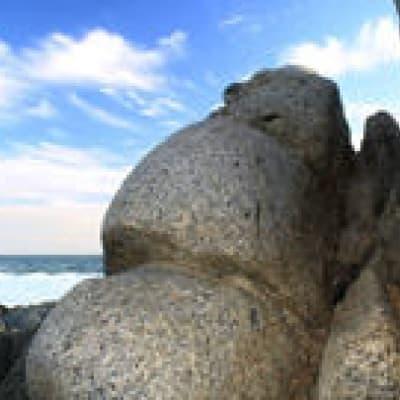 Visite d'Isla Negra