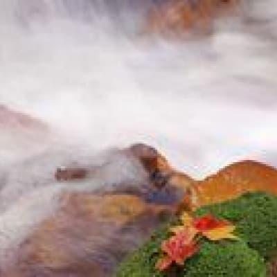 Visite des principaux sites naturels du Tohoku