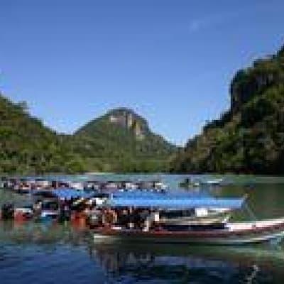 Croisière sur la rivière Kinabatangan