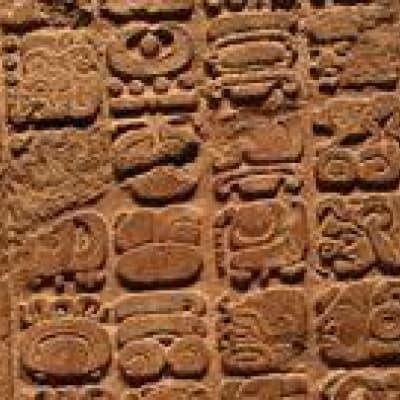Tour de ville de Mexico et visite du musée d'anthropologie