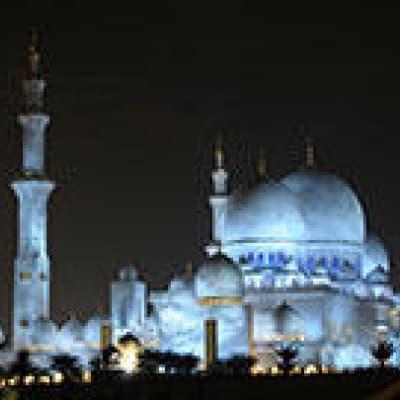 La Mosquée Sheikh Zayed et l'Hôpital des faucons