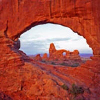Chevauchez des Mustangs dans le Red Canyon