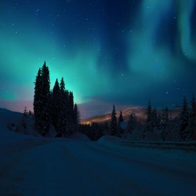 Chasse aux aurores boréales au Northern Lights village
