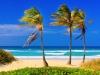 Beautés naturelles de Cuba