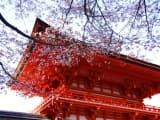 Escapade à Kyoto