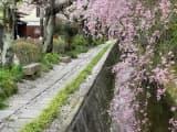 sentier philosophes kyoto