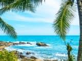 Luxe au pays de l'Or Vert - srilanka - circuit - sur-mesure - marcovasco - sejour