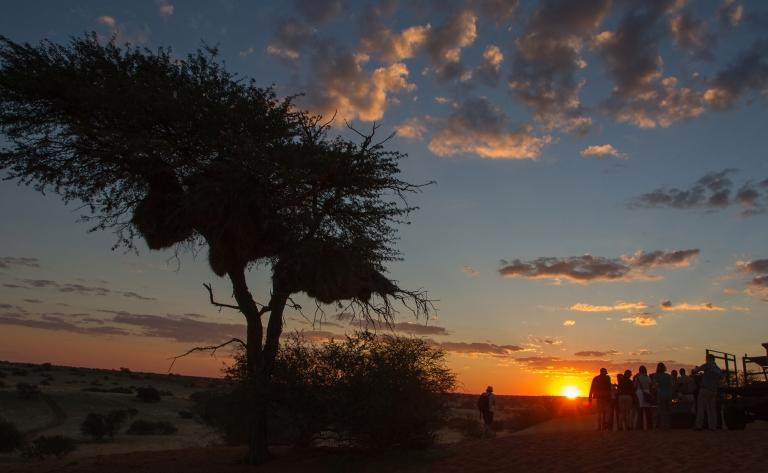 Centre de réhabilitation des guépards et safari de nuit