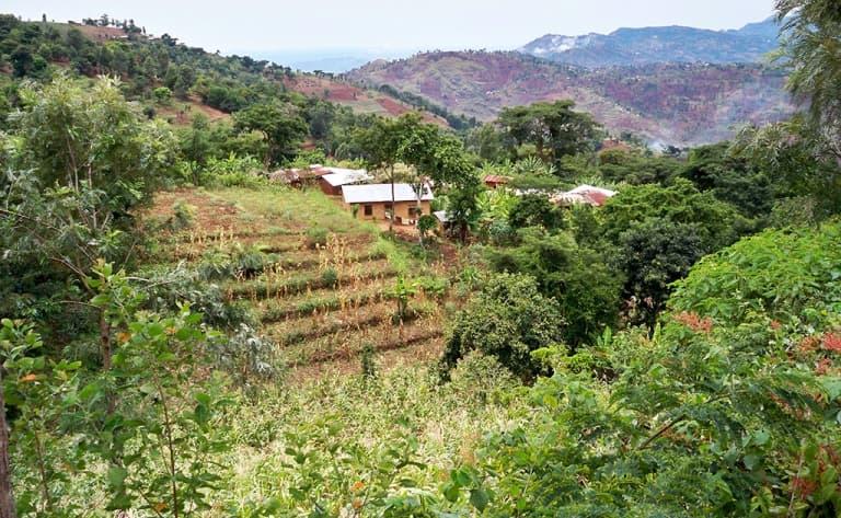 Trek sur la piste Mwanihani