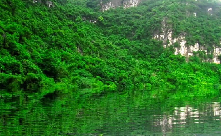 Croisière sur la rivière des parfums