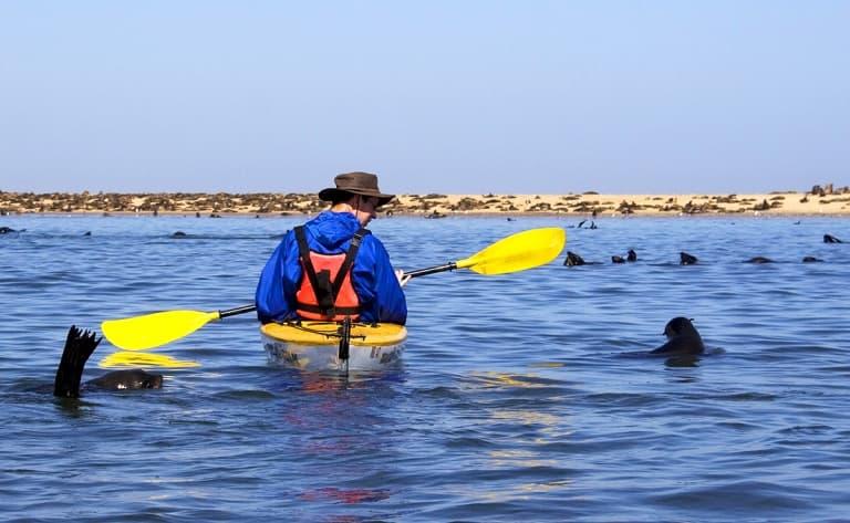 Kayak des mers