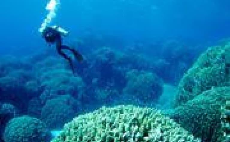 Les activités nautiques (non motorisées) au Mozambique